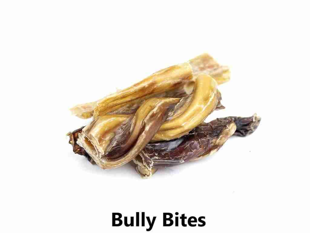 bully bites